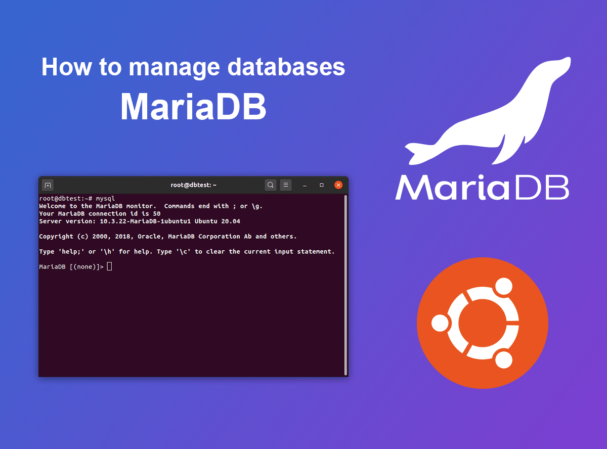 How to manage databases(MariaDB). A terminal with MariaDB and Ubuntu.